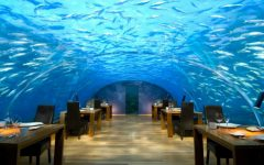 luxury restaurants Best Luxury Restaurants in the World CAPA 240x150